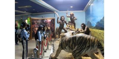 Kunjungan ke Museum Sangiran